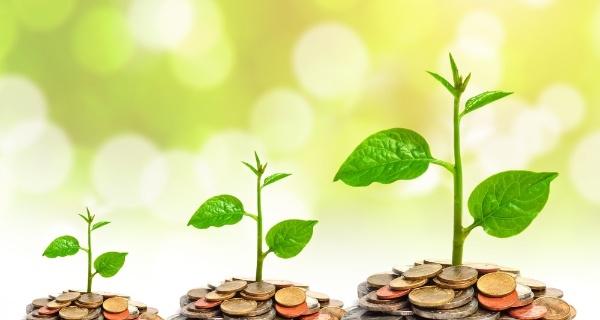6 dicas financeiras para sua loja virtual prosperar