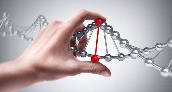 Conheça os 5 pilares do DNA de um empreendedor